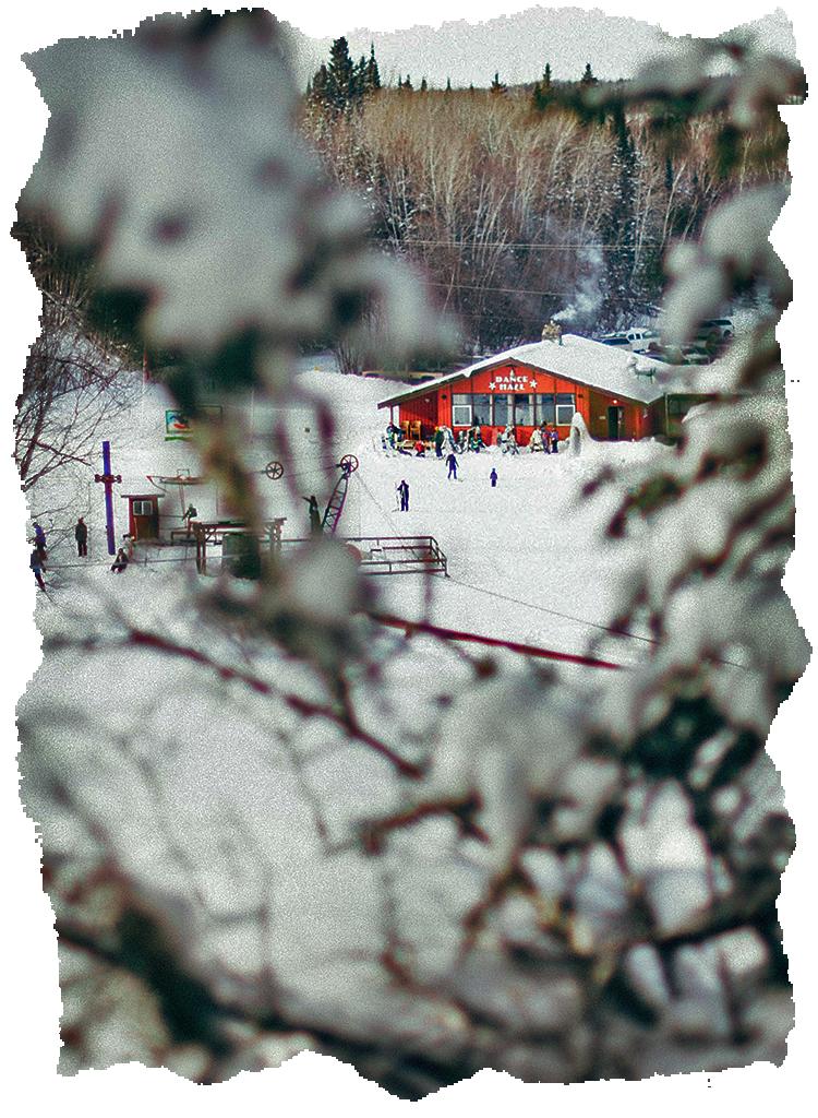 Falcon Ridge Ski Slopes